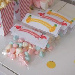 Sachet à bonbons/cadeaux...